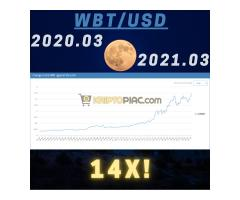 WBT index token