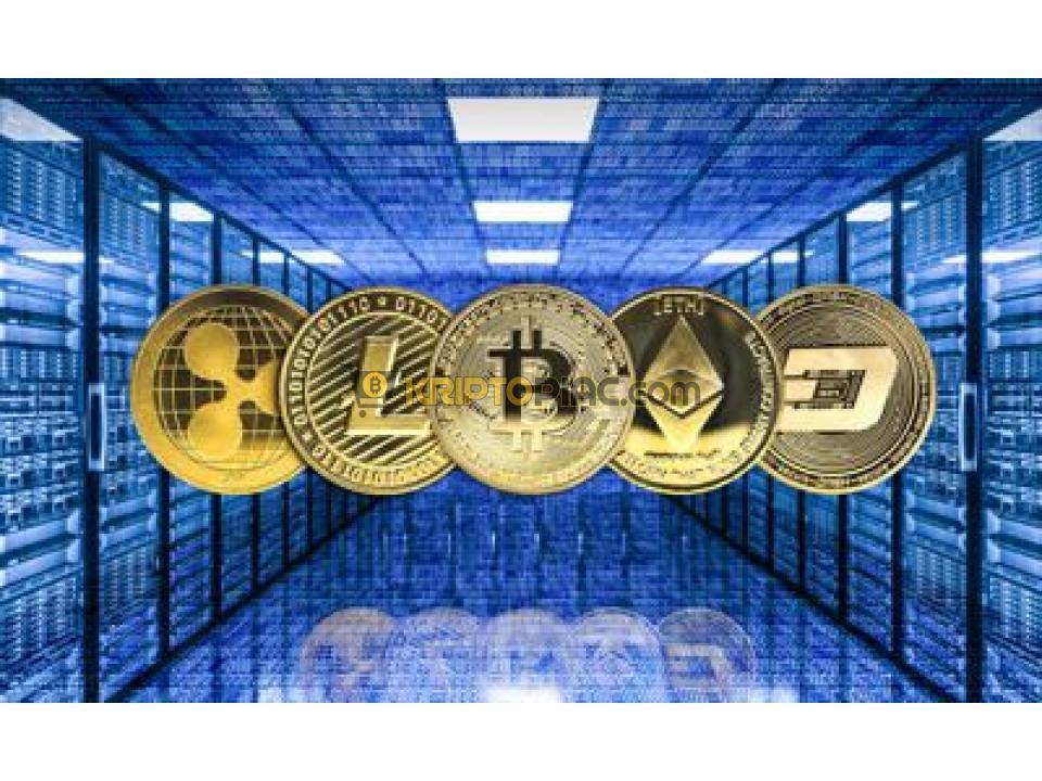 hogyan kell pénzt befizetni bitcoin-fiókba)